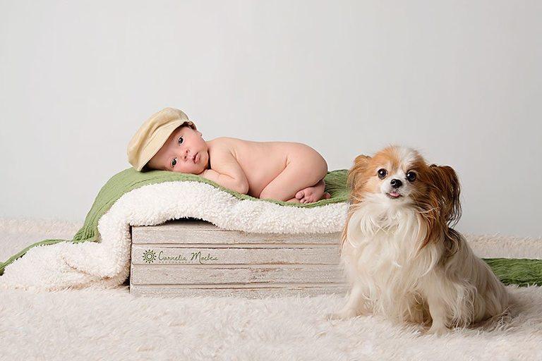 Neugeborenenfotografie Neugeborenenfotos Neugeborenenfotograf Babyfotografie Babyfotos newborn shooting Cornelia Moebes Photography Zug Zürich Luzern Aargau Schwyz