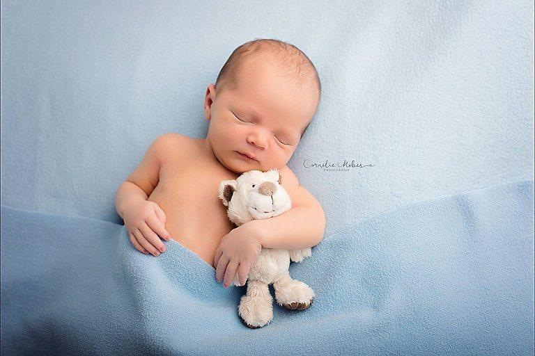 Neugeborenenfotos Neugeborenenfotografie Babyfotos Babyfotografie Newborn Shooting Baby Photographer Babyfotograf Zug Zürich Aargau Schwyz Luzern Cornelia Moebes Photography